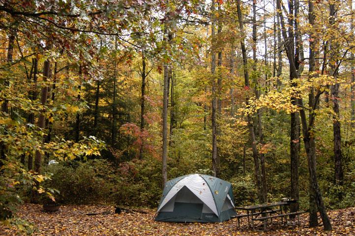 Campsite # 1